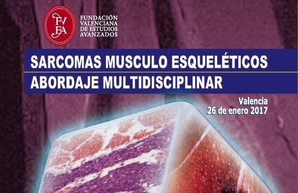 La FVEA, el Hospital La Fe y la CEU-UCH organizan la primera jornada ...