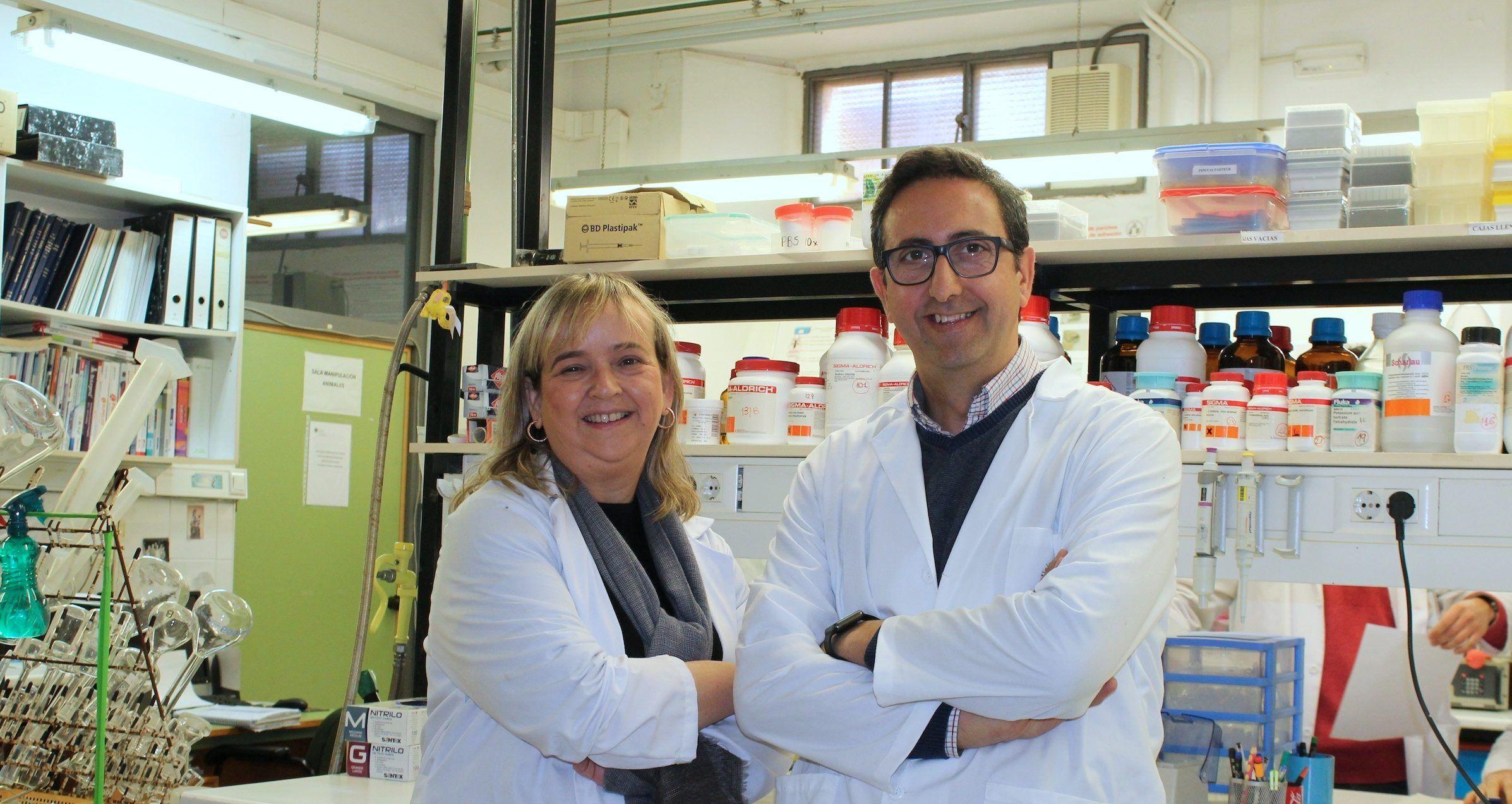 Los profesores de la CEU-UCH María Miranda y José Miguel Soria, que han dirigido al equipo investigador del Instituto de Ciencias Biomédicas de esta Universidad valenciana.