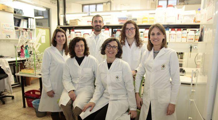 Investigadores de la CEU-UCH y miembros del equipo autor del estudio sobre administración transdérmica de memantina.