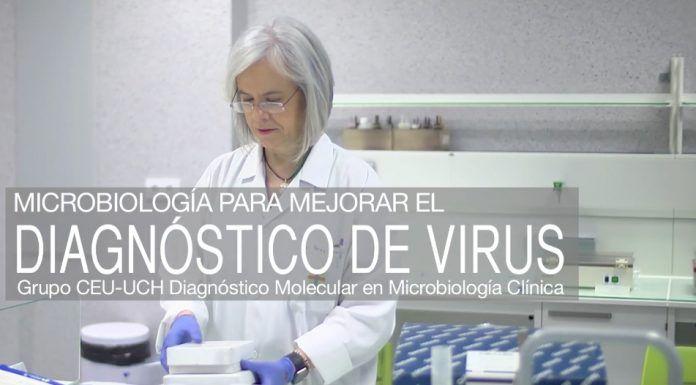 Teresa Pérez Gracia, catedrática de Microbiología del CEU-UCH.