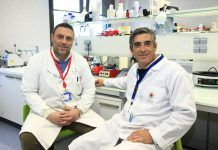 Los profesores de la CEU UCH Salvatore Sauro y Santiago Arias Luxan, autores del estudio publicado por Journal of Dentistry.