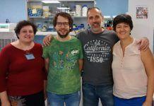 M.ª Auxiliadora Dea, Manuel Adell, David Carmena y Paula Sánchez, miembros del equipo investigador.