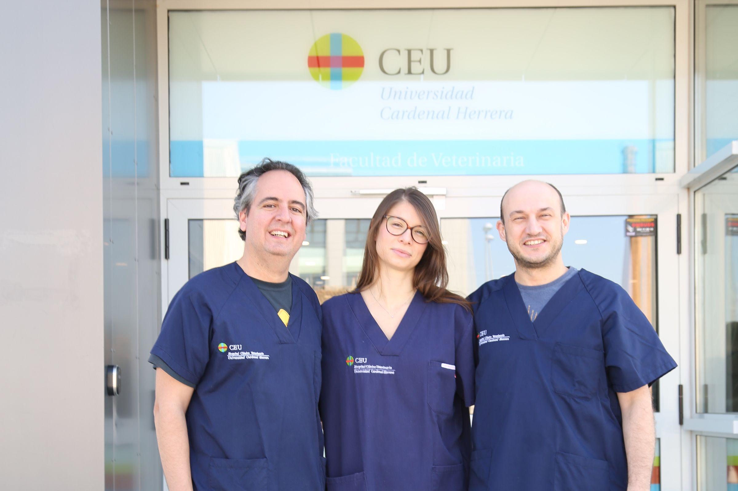 Sandra Sanchis, con su profesor en la CEU UCH, José Ignacio Redondo (izq.) y Jaime Viscasillas, del Royal Veterinary College, con los que trabaja en una nueva investigación.