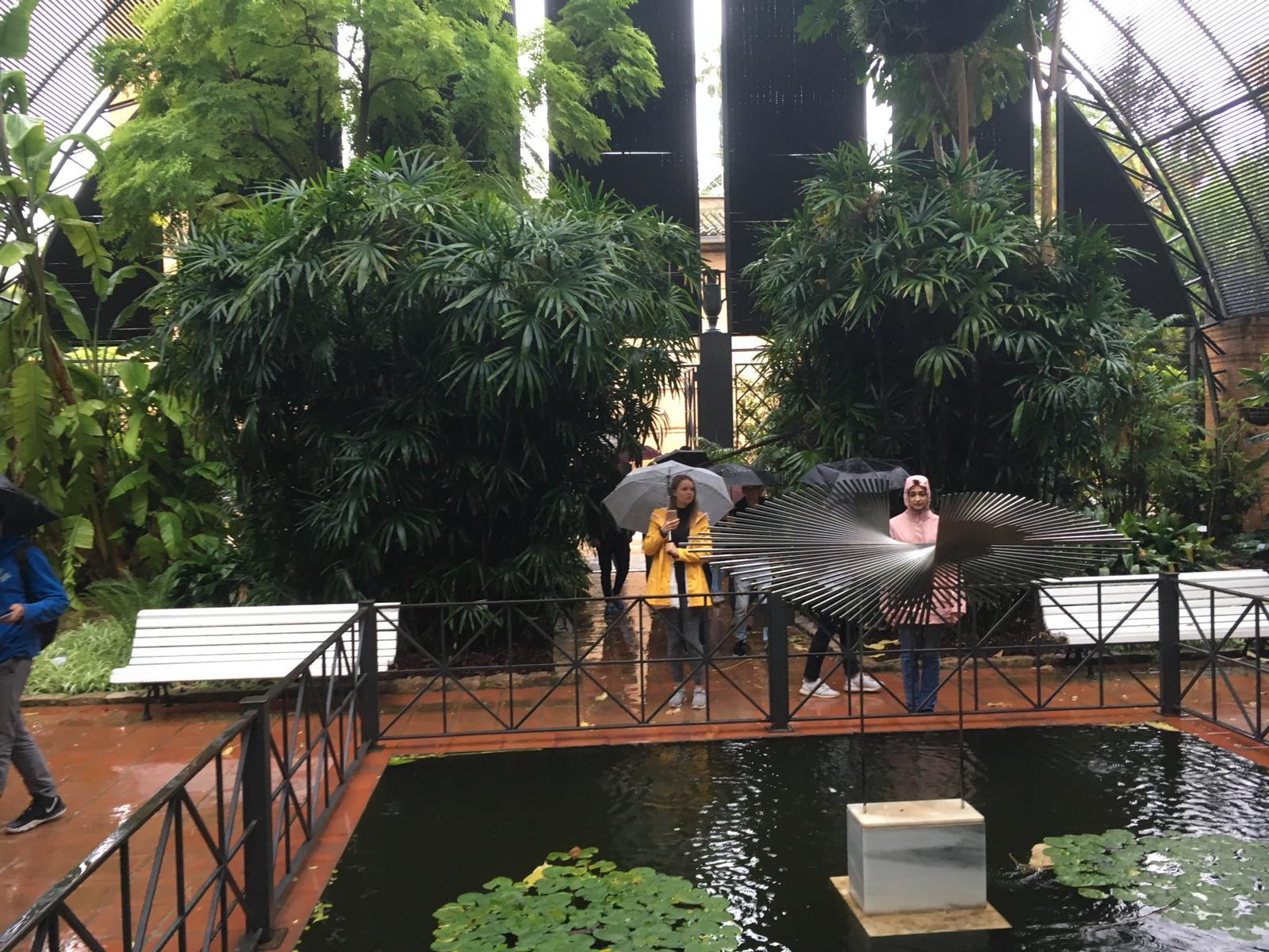 Otro momento de la visita al Jardín Botánico de la UV.