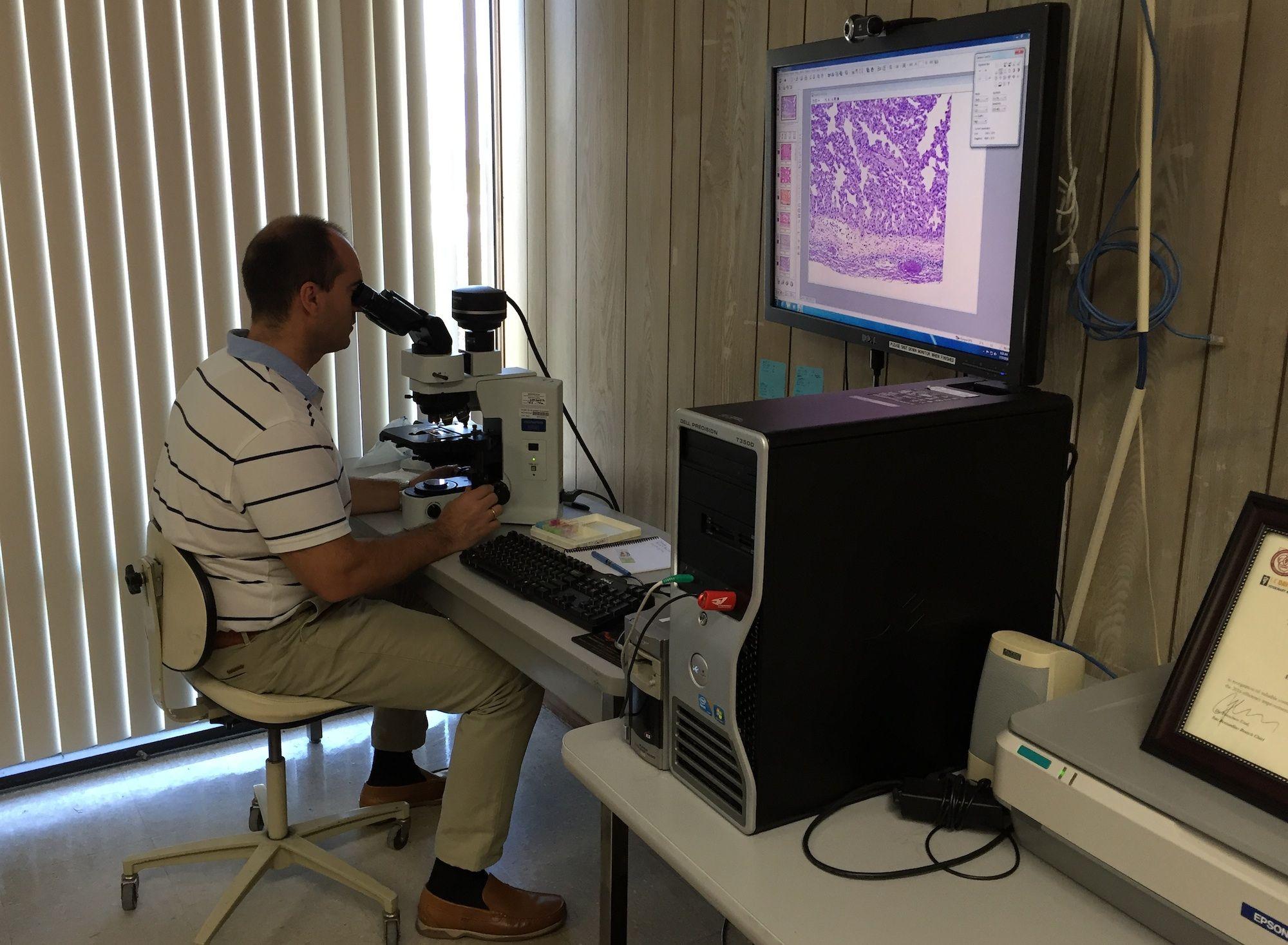 El profesor Corpa, en los laboratorios del del California Animal Health and Food Safety (CAHFS) System.
