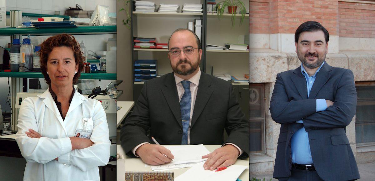 Los investigadores del Instituto de Ciencias Biomédicas de la CEU UCH Amparo Navea, Francisco Bosch y Salvador Mérida, autores del estudio.