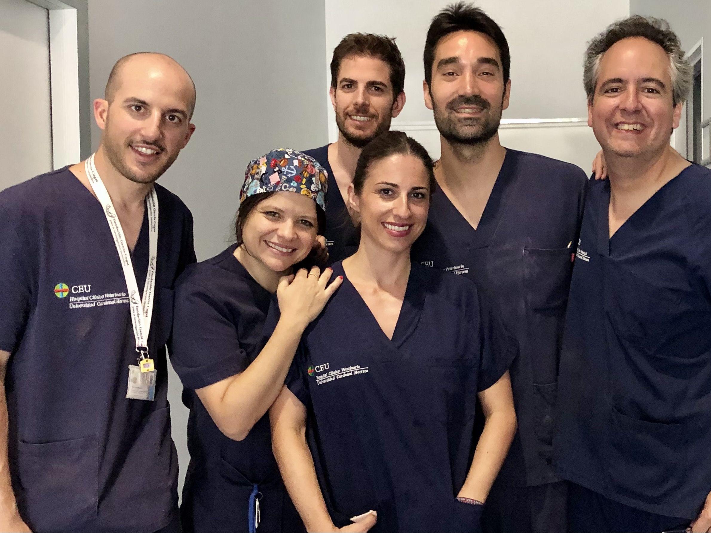 El equipo de investigadores de la Facultad de Veterinaria de la CEU UCH con Carles García Vitoria, investigador de Fisabio y anestesiólogo del Hospital Intermutual de Levante.